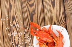 Écrevisses rouges bouillies en cuvette en céramique blanche et sel dispersé photo libre de droits