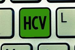 Écriture conceptuelle de main montrant Hcv Photo d'affaires présentant l'agent infectieux qui causent l'inflammation du foie image stock