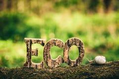 Écriture d'ECO faite à partir des lettres en bois et d'un escargot Photo libre de droits