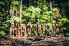 Écriture de NATURE faite à partir des lettres en bois dans la forêt Photos libres de droits