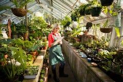 Écriture femelle de jardinier sur le presse-papiers tout en examinant des usines images stock