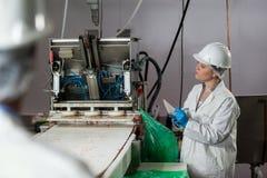 Écriture femelle de technicien sur le bloc-notes tout en examinant la machine de transformation de la viande image libre de droits