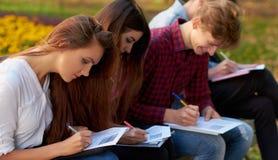 Écritures, travail d'équipe, concept social de scrutin Photo libre de droits