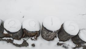 Écrivez la neige de 2015 Photographie stock libre de droits