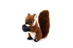 Écureuil avec son écrou Image libre de droits