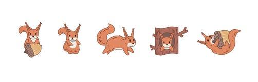 Écureuil comique coloré jouant avec l'écrou et sauter Ensemble de graphismes Illustration plate de vecteur D'isolement sur le bla illustration stock