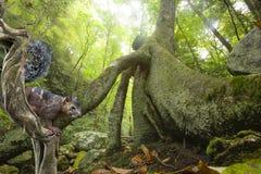 Écureuil dans la forêt photographie stock