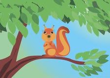 Écureuil se reposant sur l'arbre Photo libre de droits