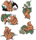 Écureuils comiques tenant des écrous Photo libre de droits