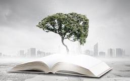 Éducation de lecture et d'individu photo stock
