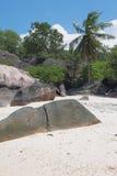 Éducations de basalte dans les tropiques Baie Lazare, Mahe, Seychelles Photos stock