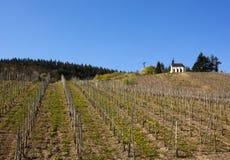Église au-dessus des vignes de vallée de la Moselle photo stock