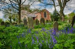 Église avec des jacinthes des bois Photos stock