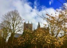 Église de St Marys et les arbres images libres de droits