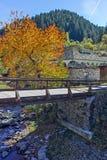 Église du 19ème siècle de l'hypothèse, de la rivière et de l'arbre d'automne dans la ville de Shiroka Laka, Bulgarie Photo libre de droits