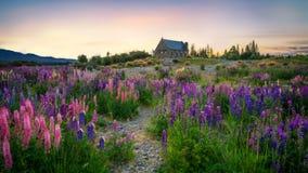 Église du bon berger, Tekapo, Nouvelle Zélande photo stock