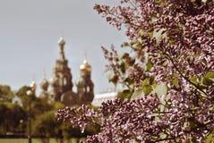 Église du sauveur sur le sang renversé ou cathédrale de la résurrection du Christ, St Petersburg, Russie Images libres de droits