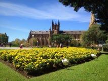 Église et fleur Photos stock