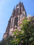 Église et roses Photographie stock libre de droits