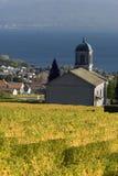 Église parmi les vignes Image stock