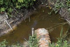 Égout menant dans la forêt Photo libre de droits