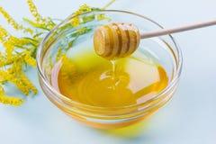 Égouttement de miel d'un plongeur en bois de miel dans le bol en verre sur un fond bleu Photos stock