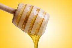 Égoutture de miel de plongeur de miel sur le fond jaune photos stock