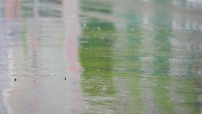 Égoutture de pluie sur l'asphalte banque de vidéos