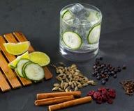 Égrenez le cocktail tonique avec de la cannelle et le ju de cardamome de clous de girofle de concombre photos stock