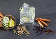 Égrenez le cocktail tonique avec le cardamome de Lima de clous de girofle de vanille de concombre photographie stock