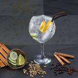 Égrenez le cocktail tonique avec le cardamome de Lima de clous de girofle de vanille de concombre photo libre de droits