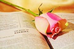 Élégance et foi, symboles Photo libre de droits