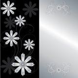 élégant floral de carte Images stock