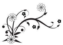 élément décoratif Photo stock