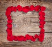 Élément de conception Vue des pétales de rose sur les vieux conseils photo stock