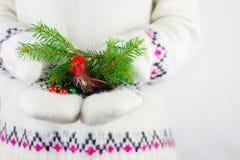 Élément de décoration de nouvelle année Photographie stock