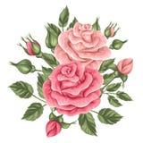Élément floral avec des roses de vintage Rétros fleurs décoratives illustration libre de droits