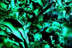 Éléments abstraits de fractale pour votre conception Images stock