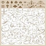 Éléments calligraphiques de conception Photographie stock