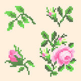 Éléments croisés de roses de point illustration libre de droits