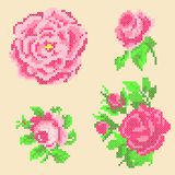 Éléments croisés de roses de point illustration stock