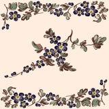 Éléments décoratifs de fleur florale de modèle Photographie stock