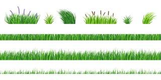 Éléments d'herbe illustration de vecteur