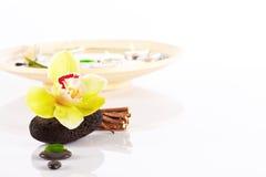 Éléments d'orchidée et de station thermale Photos stock