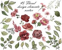 Éléments de conception de fleur Bouquet de source des fleurs illustration libre de droits