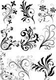 éléments de conception floraux Illustration de Vecteur