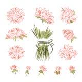 Éléments de conception pour le bouquet floral Image libre de droits