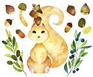 Éléments de forêt d'aquarelle illustration stock