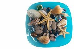 Éléments de mer du plat bleu Photos libres de droits