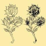 Éléments 02 de style de tatouage d'Oldskool de roses Images libres de droits